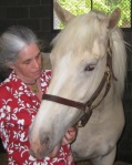 Author making friends with Cavalier, a 5yo American Cream Draft. Photo by Karen Smith.
