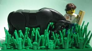 LEGO graze