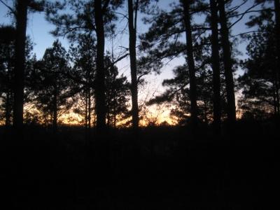 sunset 1a