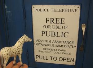 Spotted TARDIS
