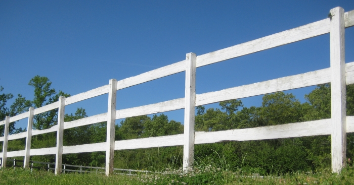 SSF ring fence