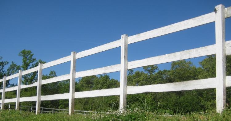SSF ring fence