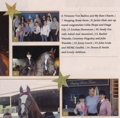 Saddle Horse June 2013 page 46