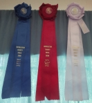 Saddleseat continues the tradition of impressive ribbons. These grand specimens are over 2' long.