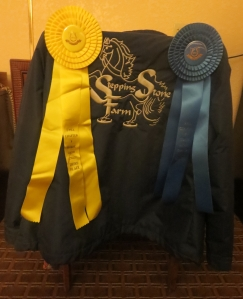 Apres show: third & first with Alvin Ailey in Academy Adult Walk/Trot.
