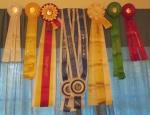 ribbons NACHS