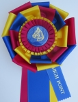 ASHAA 2013 hp ribbon top