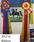 2013 ribbons 3