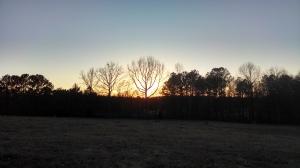 sun feb 13 14