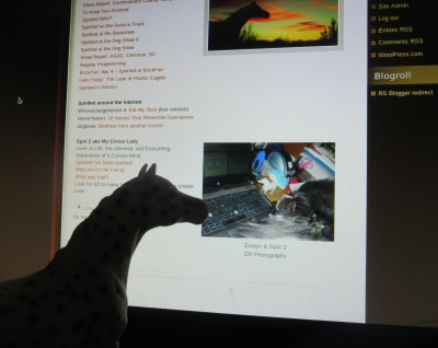Spotted checking out the latest changes to her page.