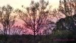 sunset April 11 2014 wm