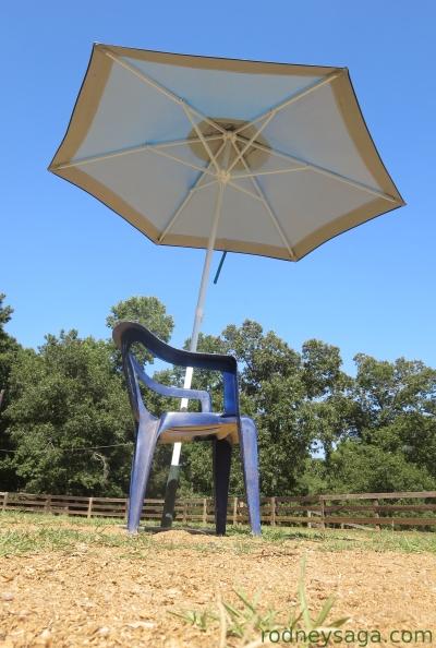 judges umbrella