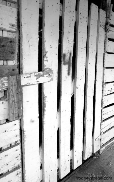 stall door 2