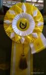 yellow 2014