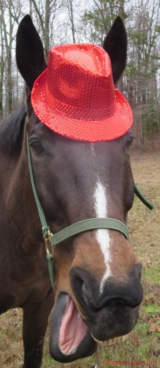 Rodney red hat 12 24 14 750