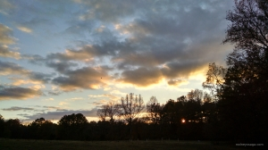 sunset 11 17 14 wm
