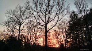 sunset 12 17 14 wm