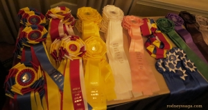 Academy Ribbons