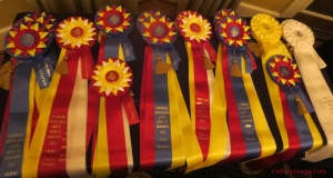 Performance Ribbons Table 1