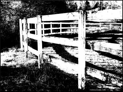 fence b&w
