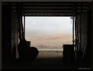 SC show barn scenery