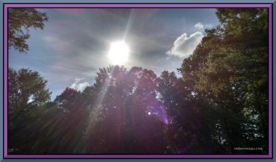 scenic sun