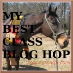 MBC blog hop badge