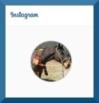 Instagram header August 2015