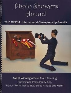 MEPSA Annual 2016
