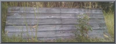 jump overgrown 2