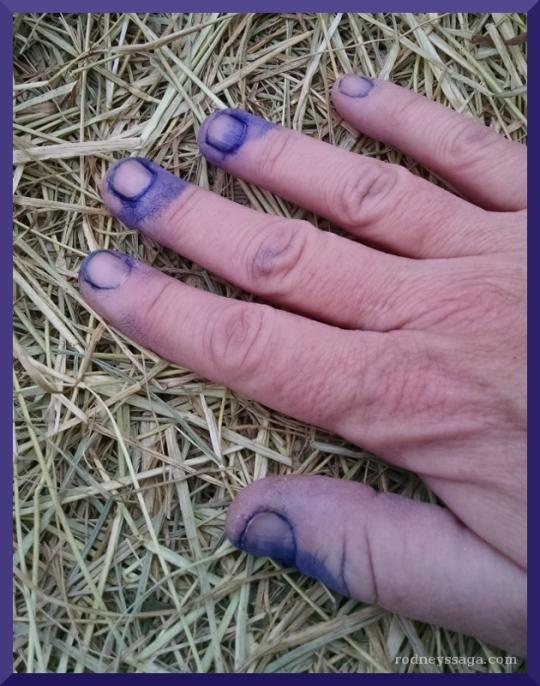 blue hand.jpeg