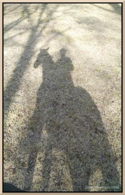 shadows Jan 2016