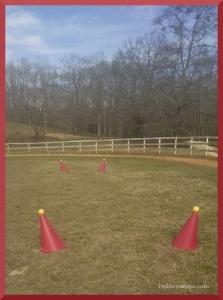 cones feb 2016