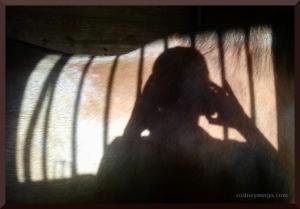 Sam shadow selfie