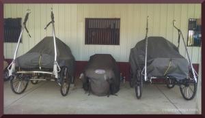 mini carriage