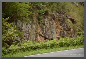 roadside 2