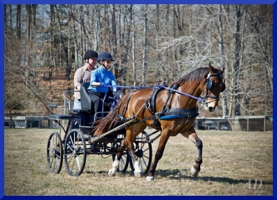 Coach Kate driving Jewel, Kevin Smith navigating. Photo by Angie DePuydt