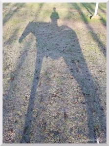 rodney-shadow-feb-2017